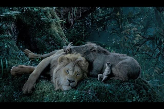 キング 映画 ライオン